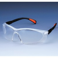 Resistant goggles 10705