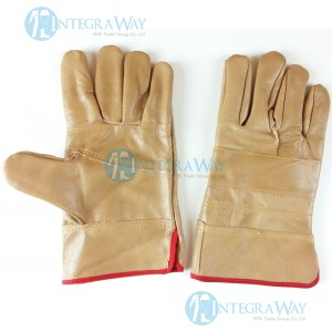 Leather gloves GL6614500L